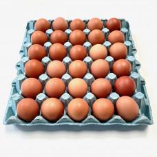 Tray Medium Eggs (30 eggs)