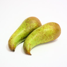Conference Pears x 4
