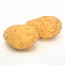 Baking potatoes x 4